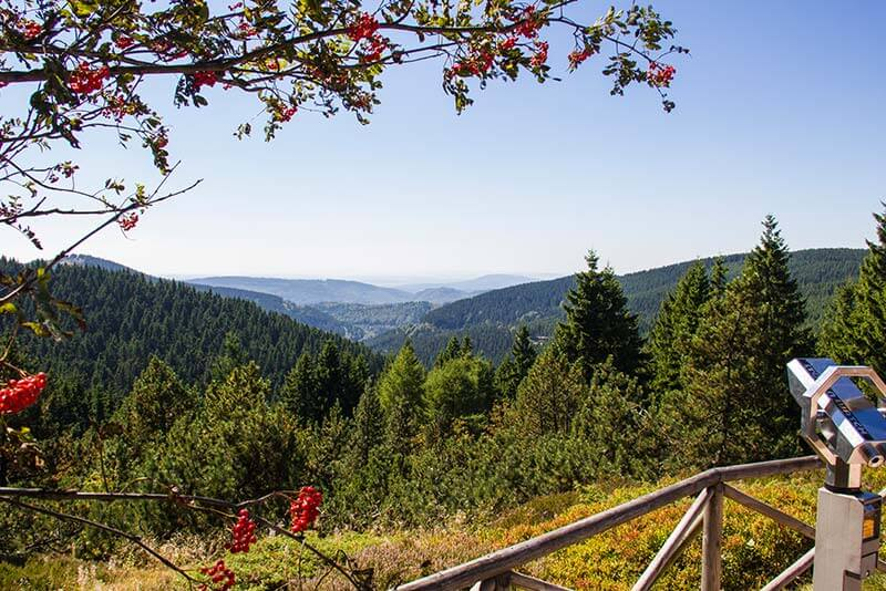 Rennsteiggarten Oberhof - Rundgang - Blick vom Pfanntalskopf