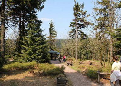 Rennsteiggarten Oberhof - Rundgang - Blick vom Meiler zu den Infopunkten