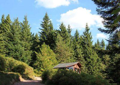 Rennsteiggarten Oberhof - Rundgang - Bereich Nordamerika mit Schutzhuette